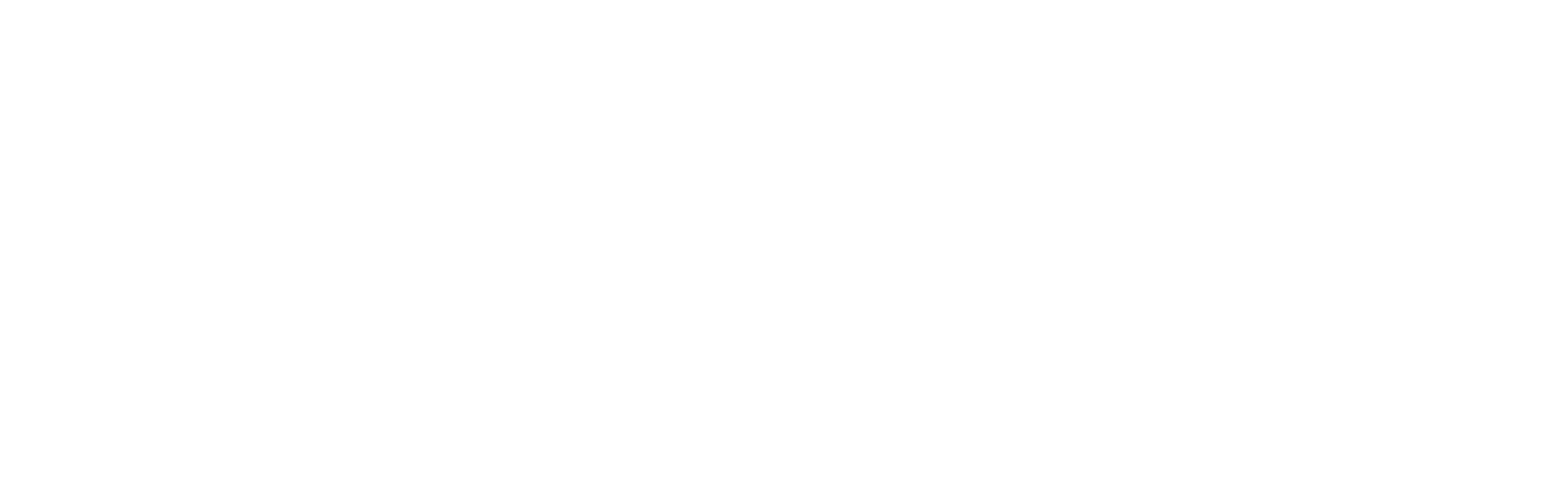 Bjarke Underskrift