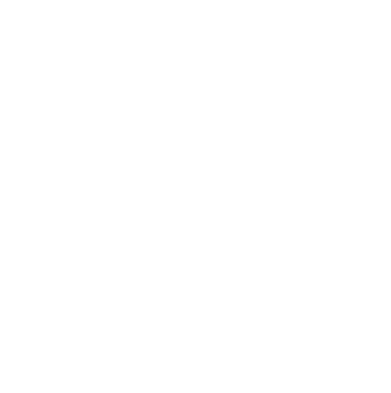 Sea Trout Capital